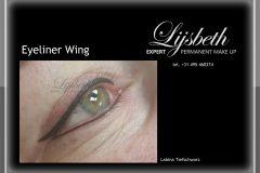 PMUEXPERT Lijsbeth 2016-01-02 SM Eyeliner Wing Tiefschwarz LaBina
